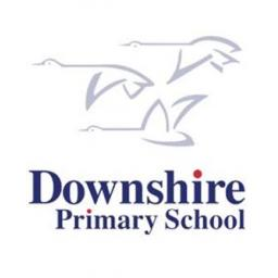 Downshire PS Dodgeball 7 weeks P4-P7