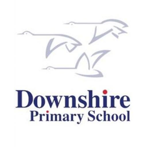 Downshire PS