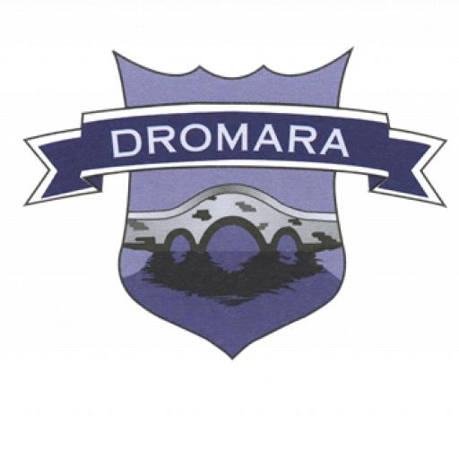 Dromara PS Dodgeball 6 Weeks P4-P7