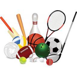 multi-sports.jpg
